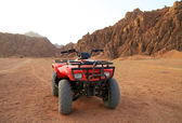 Quad trip in Sinai mountains — Stock Photo