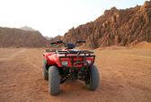 Quad trip in Sinai mountains — Stock Photo