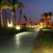 Walk side under palm trees at night — Stock Photo #2759039