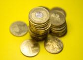 Polish zloty coins — Stock Photo