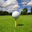 Stock Photo: Golf ball on the course
