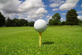 Golf ball on the course — 图库照片