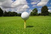 高尔夫球在球棒上课程 — Stock fotografie