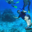 Stock Photo: Snorkeling in Red Sea
