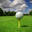 Golf course from ball view — Stock Photo
