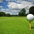 Golf course from ball view - Stock Photo