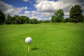 Golf ball on tee — Foto Stock