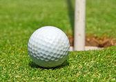 Golf topu ot delik — Stok fotoğraf