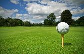 Dalla vista di palla da golf — Foto Stock