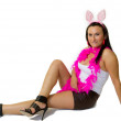 Sexy bunny girl — Stock Photo