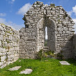 Abbey ruins in Ireland — Stockfoto #3843001