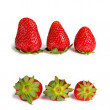 Stock Photo: Standing and lying strawberries