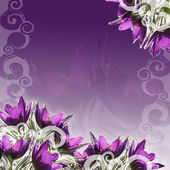 Pasque-flowers border — Stock Photo