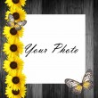 Wooden frame with sunflowers — Stock Photo