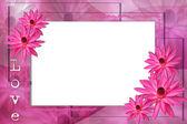 Lavender lotus border — Stock Photo
