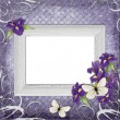 Vintage frame with irises — Stock fotografie