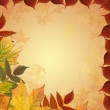 Autumn colored maple leaves frame — Stock Photo