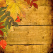 Autumn colored maple leaves on wooden board — Stock Photo #3781857