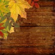 Autumn colored maple leaves on wooden board — Stock Photo #3782538