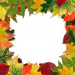 Colorful Autumn leaves in shape of border of frame on white back — Stock Photo