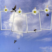 Polaroid photos hanging on a rope against blue sky — Stock Photo