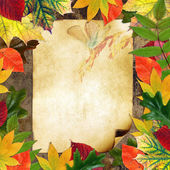 Blank grange card surrounded by beautiful autumn leaves — Stock Photo