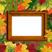 Wooden frame on grange background surrounded by beautiful autumn — Stock Photo