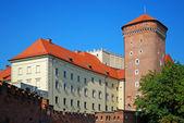 Wawel kalesi — Stok fotoğraf