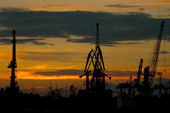 Silhouettes of cranes in the port — Stock Photo
