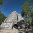 Xaibe mayan pyramid in Coba, Mexico - Stock Photo