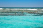 Snorkeling in the open sea — Fotografia Stock