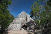 Xaibe mayan pyramid in Coba, Mexico — Stock Photo