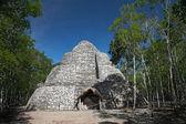 Xaibe mayan pyramid in Coba, Mexico — Stock Photo