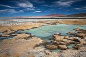 Sól jezioro salar de tara, pustynia atacama, chile — Zdjęcie stockowe