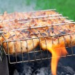 Grilled chicken in barbecue grate — Stock Photo
