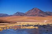 Stratovolcano Cerro Colorado near Rio Putana in Atacama region, Chile — Stock Photo