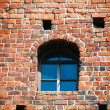 Stock Photo: Window in old brick wall