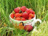 Strawberry Mug — Stock Photo