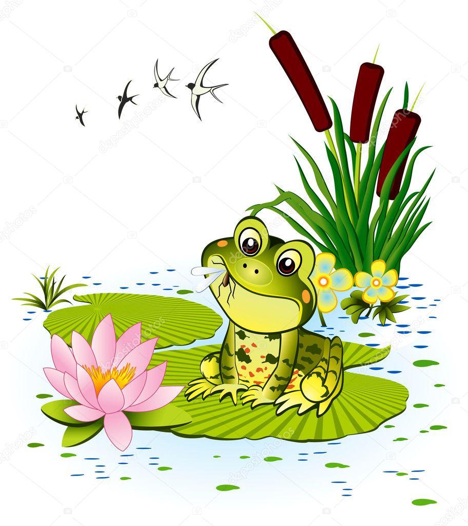 Рисунки с лягушками на болоте