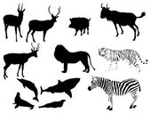Animal vector — Stock Vector