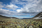 Plateau of ruins — Stock Photo