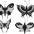 Four different butterflies — Stock Photo
