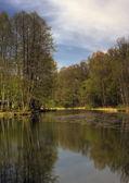 Göl — Stok fotoğraf