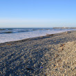 ストック写真: Greymouth Beach in Evening Light. New Zealand