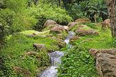 Waterfalls of Borneo. Waterfalls, rainforest, mountain river. — Stock Photo