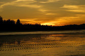Not man-made beaches of coast of peninsula Sematan. Evening. Borneo. — Stock Photo