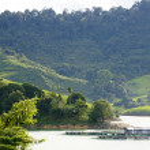 Blue lake in a jungle of Borneo — Stock Photo