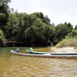 The rivers Borneo. - Photo