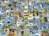 Piles of photo background — Stock Photo