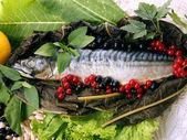 Aliments pour poissons 2 — Photo